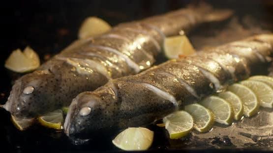Timelapse Lachs mit Zitronenscheiben im Ofen gebacken