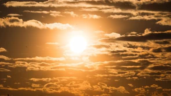 Thumbnail for Sonnenuntergang über dem Sturm Wolken und über Bäumen und Pfeifen der Pflanze