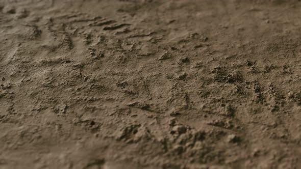 Thumbnail for Wheel Tracks on Rough Road