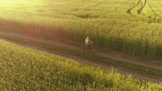 Cover Image for Aerial View on Young Boy, That Rides a Bicycle Thru a Wheat Grass Field on the Old Rural Road
