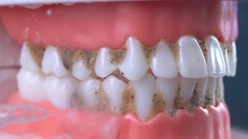 Cleaning Jaw