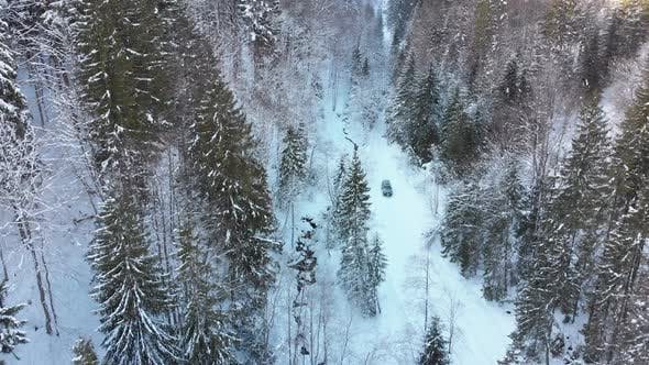 Cover Image for Aerial View on Car Riding on Snowy Road in a Winter Coniferous Forest