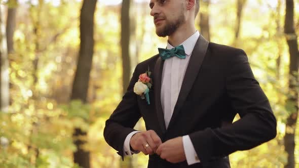 Groom, Brunette Young Man in the Yellow Autumn Park. Wedding Day. Businessman