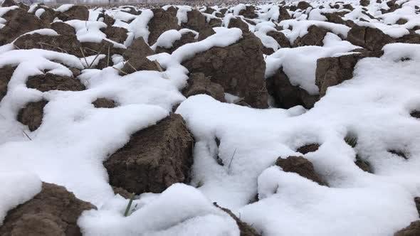Verschneite landwirtschaftliche Flächen