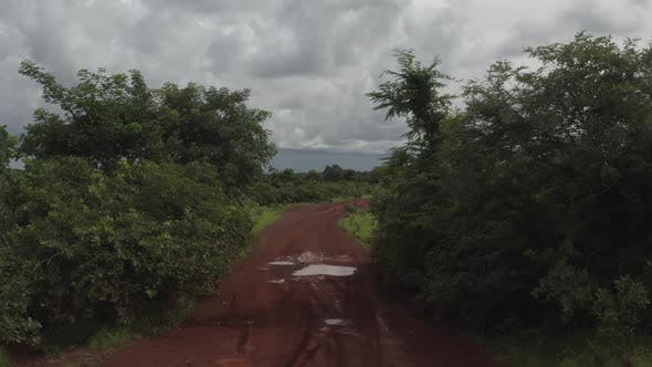 Thumbnail for Africa Mali Forest And Red Road Aerial View