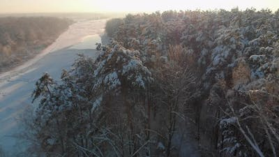 Aerial Snowcovered Forest on the Bank of a Frozen River