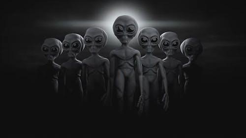 Alien Loop 07