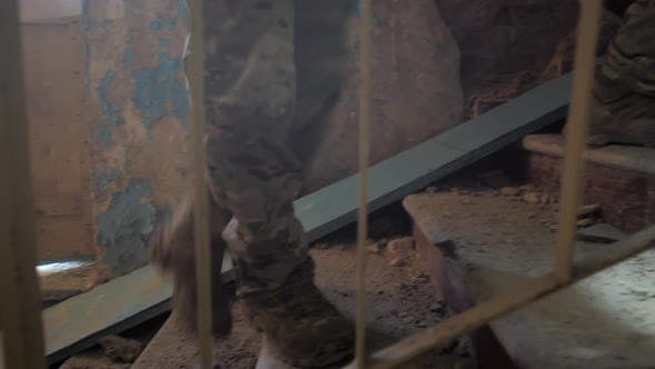 Thumbnail for Soldiers Climbing Stairs of Ruined Building