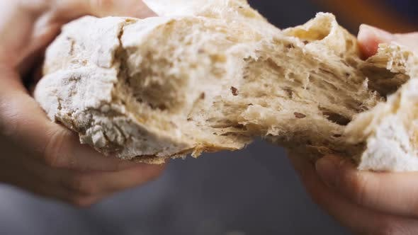 Hands Hold and Break a Large Appetizing Loaf of Bread with a Crispy Baked Crust. Selective Focus.