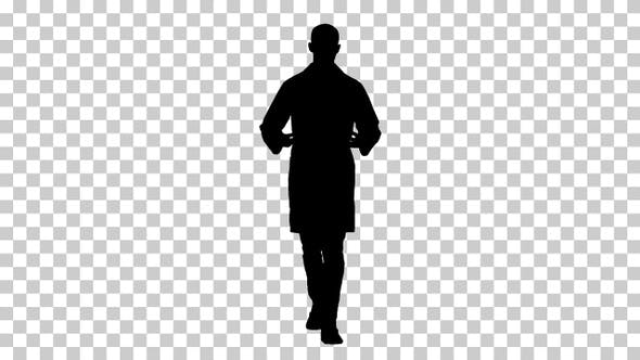 Thumbnail for Silhouette male doctor walking, Alpha Channel