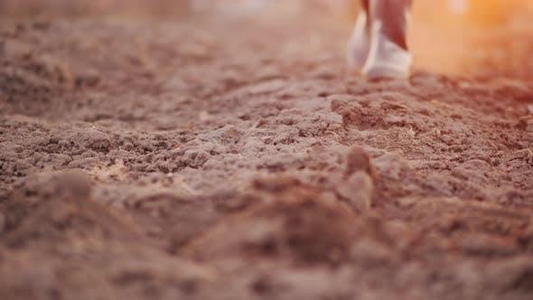 Thumbnail for A Farmer in Boots Walks Across a Plowed Field