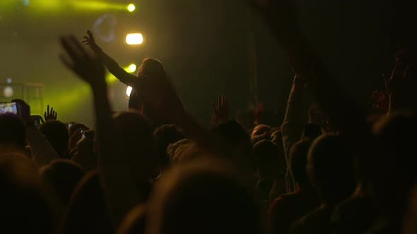 Viewers waving hand with favorite music