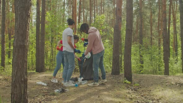 Thumbnail for Mulitiracial People Clean Up Forest From Plastic Waste