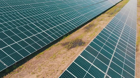 Cover Image for Aerial View of Solar Power Station. Panels Stand in a Row on Green Field. Summer