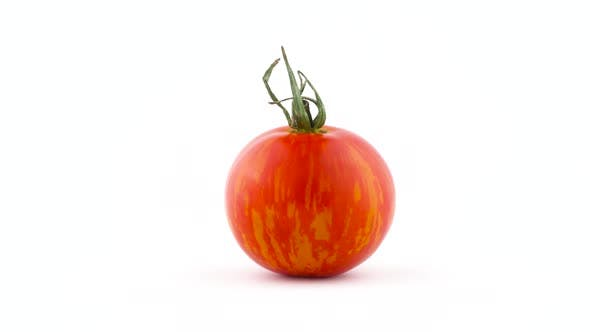 Thumbnail for One Whole Red Globe Striped Tomato. Rotating on the Turntable Isolated on the White Background