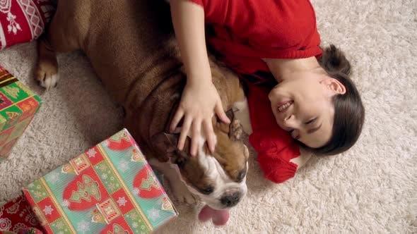 Thumbnail for Charming Girl spielt niedliche lustige Bulldogge unter Weihnachtsbaum. doggie ist sehr niedlich spielen mit ein