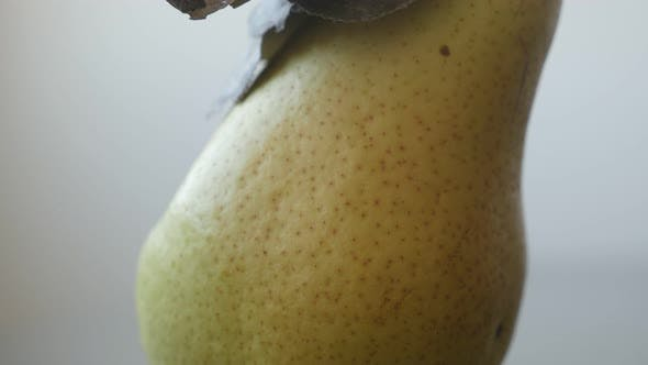 Thumbnail for Lot of details details on   organic pear  surface 4K 2160p UltraHD tilting footage - Tasty fruit fro