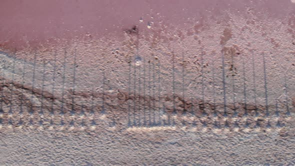 Thumbnail for Crystallized pink salt on Kuyalnik estuary, top view. Abandoned salt farm with wooden posts in water