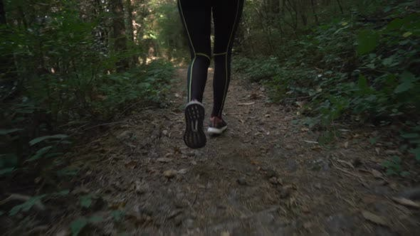 Thumbnail for Running Down the Forest Path