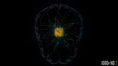 Brain Microprocessor Hardware with Connections Concept for Artificial Intelligence