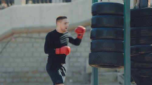 Boxer-Training