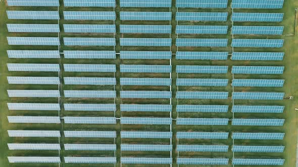 Aerial Drone View of the Solar Panels in Solar Farm for Green Energy