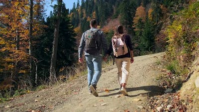 Two Tourists are Hiking in Woodland at Autumn