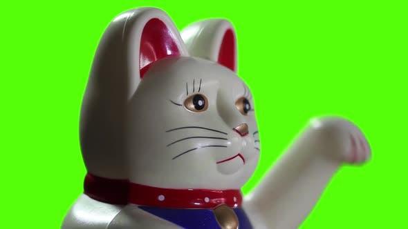 Thumbnail for Maneki Neko Cat on Green Screen.