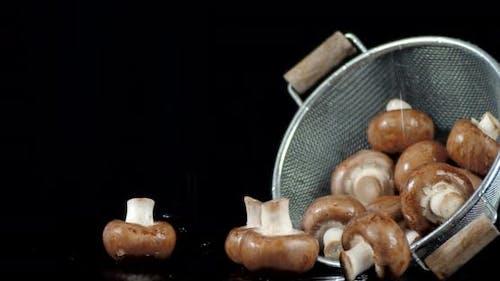 Mushrooms in a Colander Falling Water Drops.