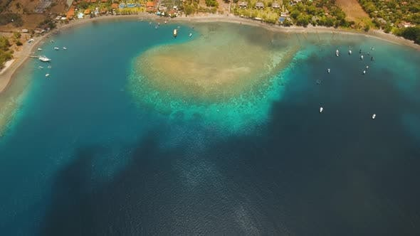 Cover Image for Coral Reef Atoll, Bali