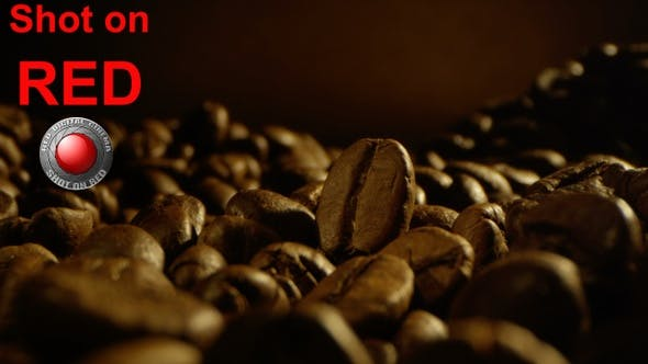 Thumbnail for Coffee Brewing Preparation
