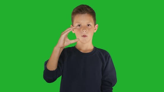Thumbnail for Gehörlose Boy Signing I Know Gebärdensprache, Kommunikation für Hörgeschädigte. Grüner Bildschirm