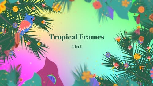 Tropical Frames - 4 In 1