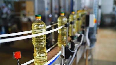 Oil Bottling Industry