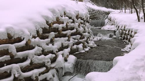 A Wall of Logs Encloses a Small Stream in the Forest Near Bare Trees