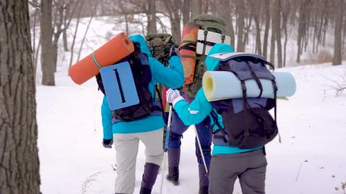 Four People in the Expedition