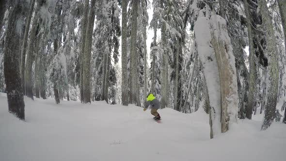 Thumbnail for Following Snowboarders In Thick Tree Backcountry Woods