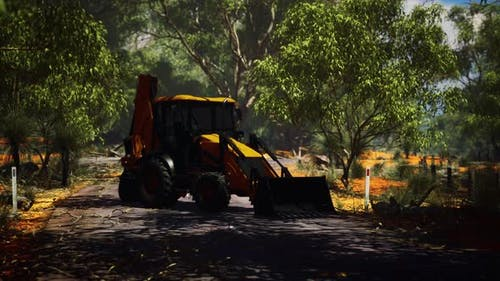 Excavator Tractor in Bush Forest