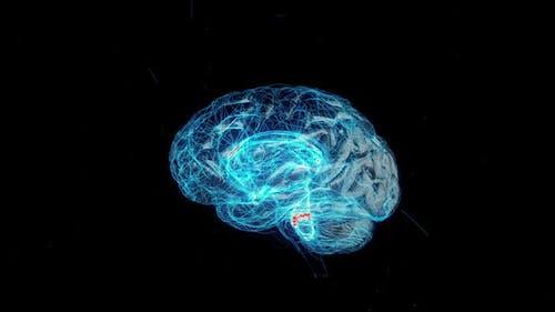 Digital Technology of a Human Brain