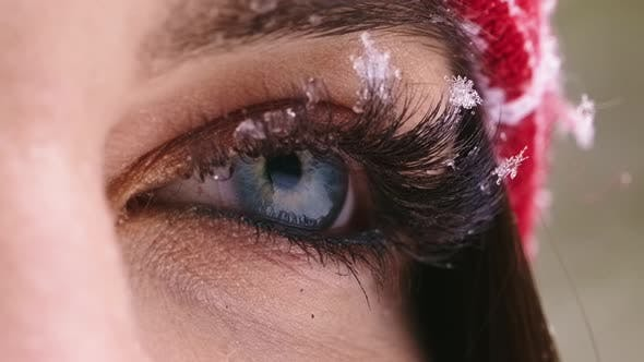 Thumbnail for Open Expressive Blue Eyes with Frost or Snow on Eyelashes Macro Close-up in Winter.