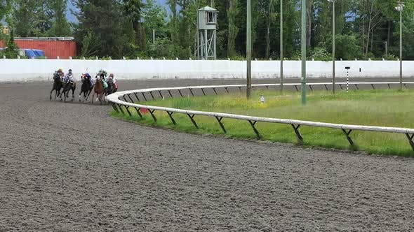 Thumbnail for Horse Race Jockeys at Track