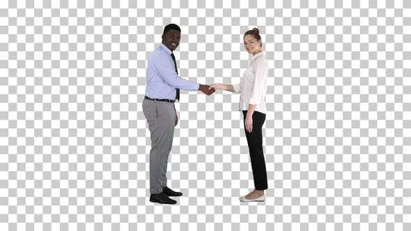 Thumbnail for Handshake of Business Woman and Business Man Posing for The