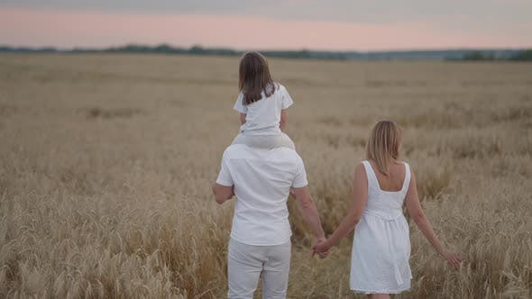 Slow Motion Happy Family of Farmers with Child are Walking on Wheat Field
