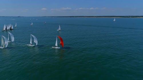 Yachten verlängern Spinnakers bei einem Segelrennen