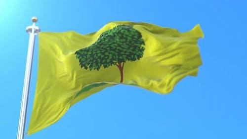 Lipetsk Flag, Russia