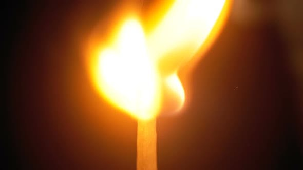 Thumbnail for Igniting Match and Flame on a Black Background