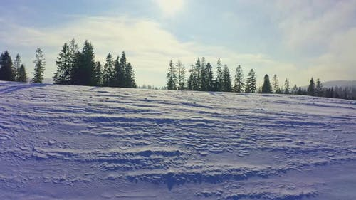 Mountain Slopes Covered with Lush Christmas Trees and Snowwhite Snow with a Place for Skiing