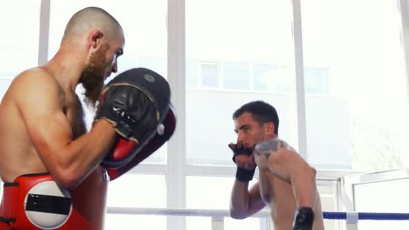 Cover Image for Two Male Mma Fighters Training Shirtless at the Gym