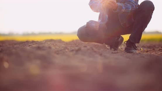 Thumbnail for Soil, Agriculture, - Farmer Hands Holding and Pouring Back Organic Soil. Farmer Touching Dirt on