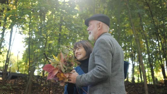 Thumbnail for Happy Elderly Couple Dancing on the Alley of a Beautiful Park in the Autumn - Slow Motion.